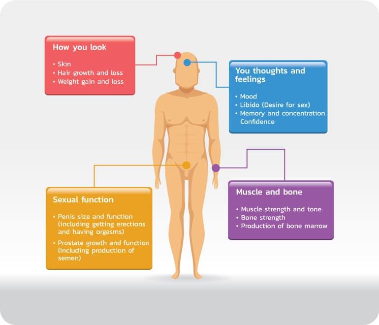 การรักษาโดยการควบคุมฮอร์โมนเพศชาย